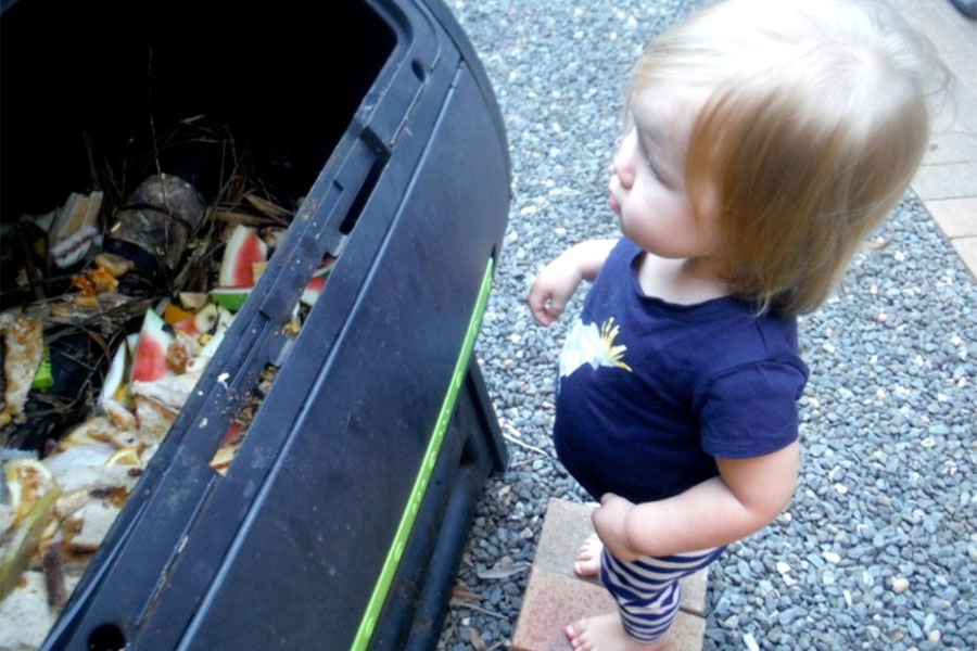 Nursery - Inspecting the compost
