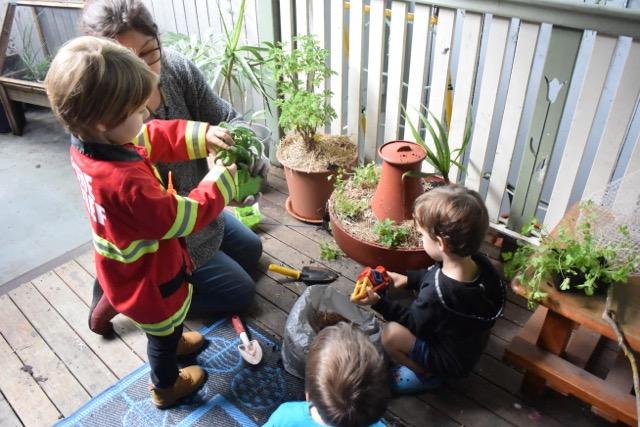 Junior Kindy - Veranda Garden and Worm Farm 3